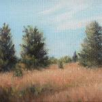 EASTERN RED CEDARS I 5 x 7  oil/canvas